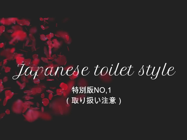 Japanese toilet style.特別版NO,1