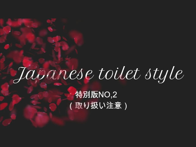 Japanese toilet style.特別版NO,2
