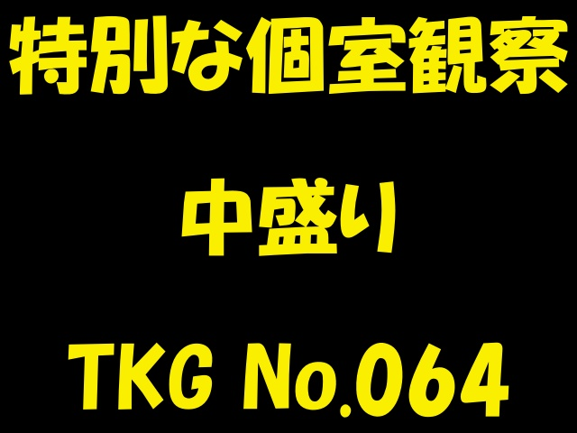 個室特別観察 中盛り TKG No.064